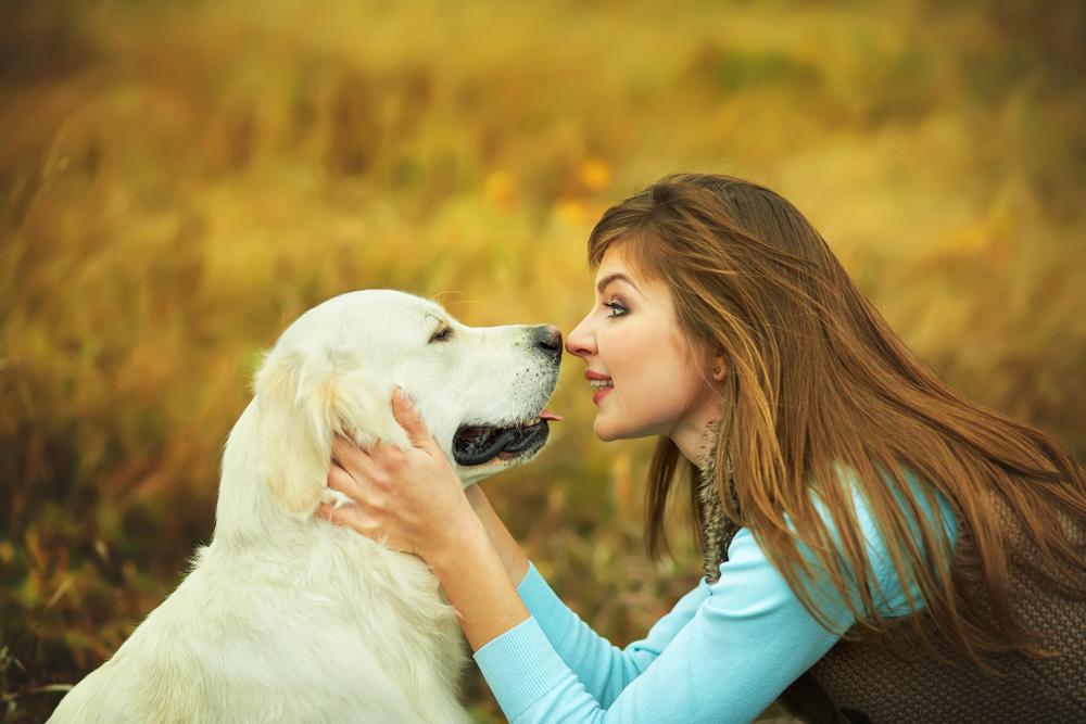 Migliorare la relazione con il nostro cane: tutto ciò di cui ha bisogno