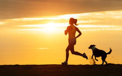 Dog&Fitness: allenarsi con il proprio cane